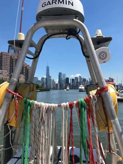 New_york_sky_line