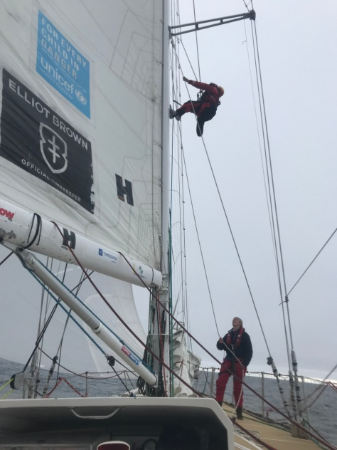 sailing_climbing_mast