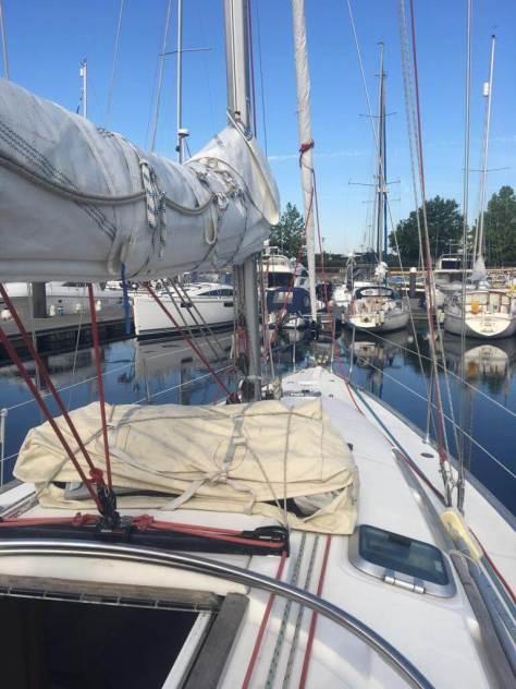 elite_sailing